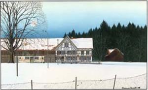 """Karte mit Kuvert """"Schweizersholz"""" 17x12 cm"""
